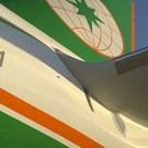 EVA Air tail